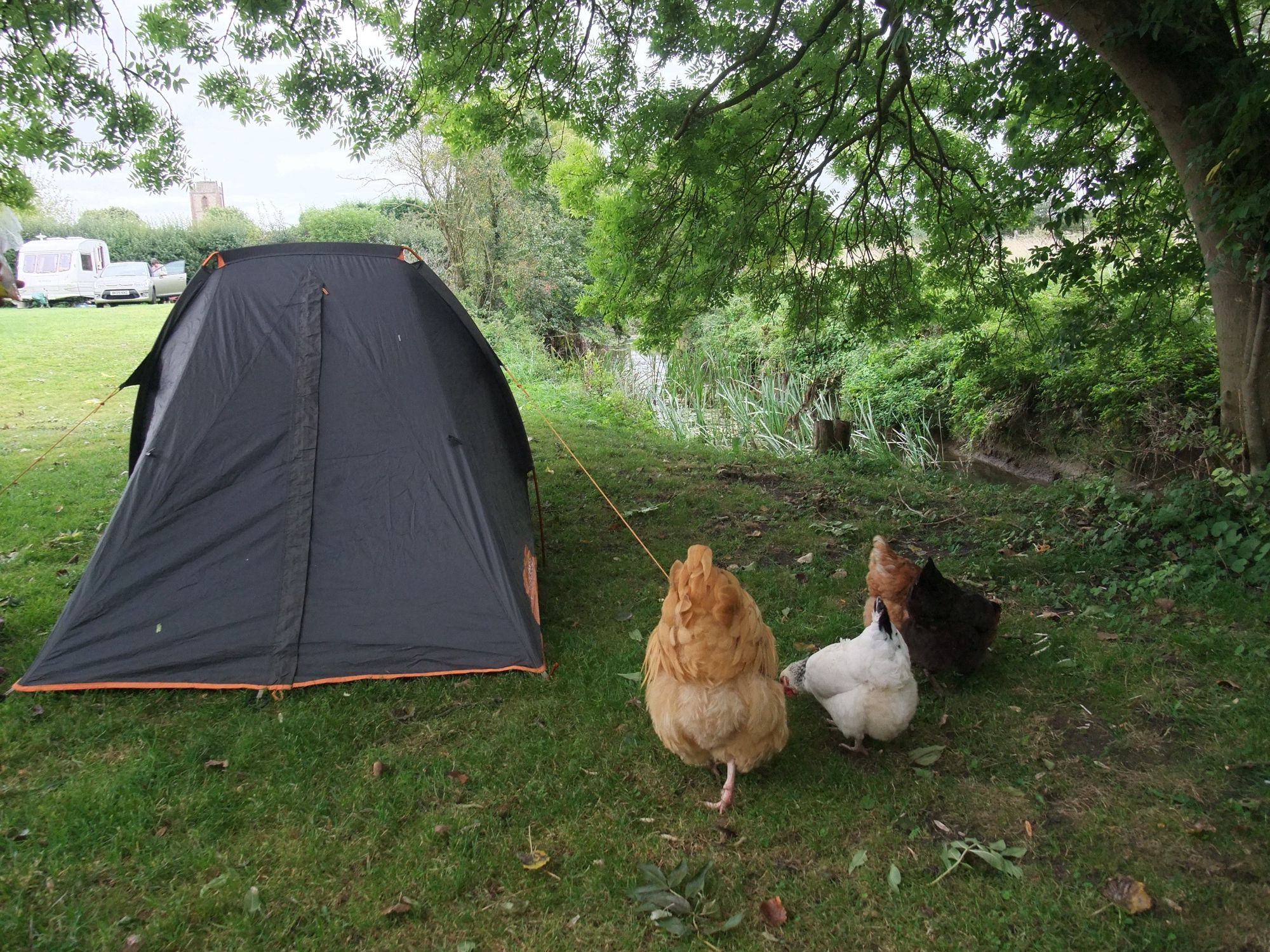 Campsites in Warwickshire