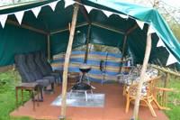 White Owl Tent