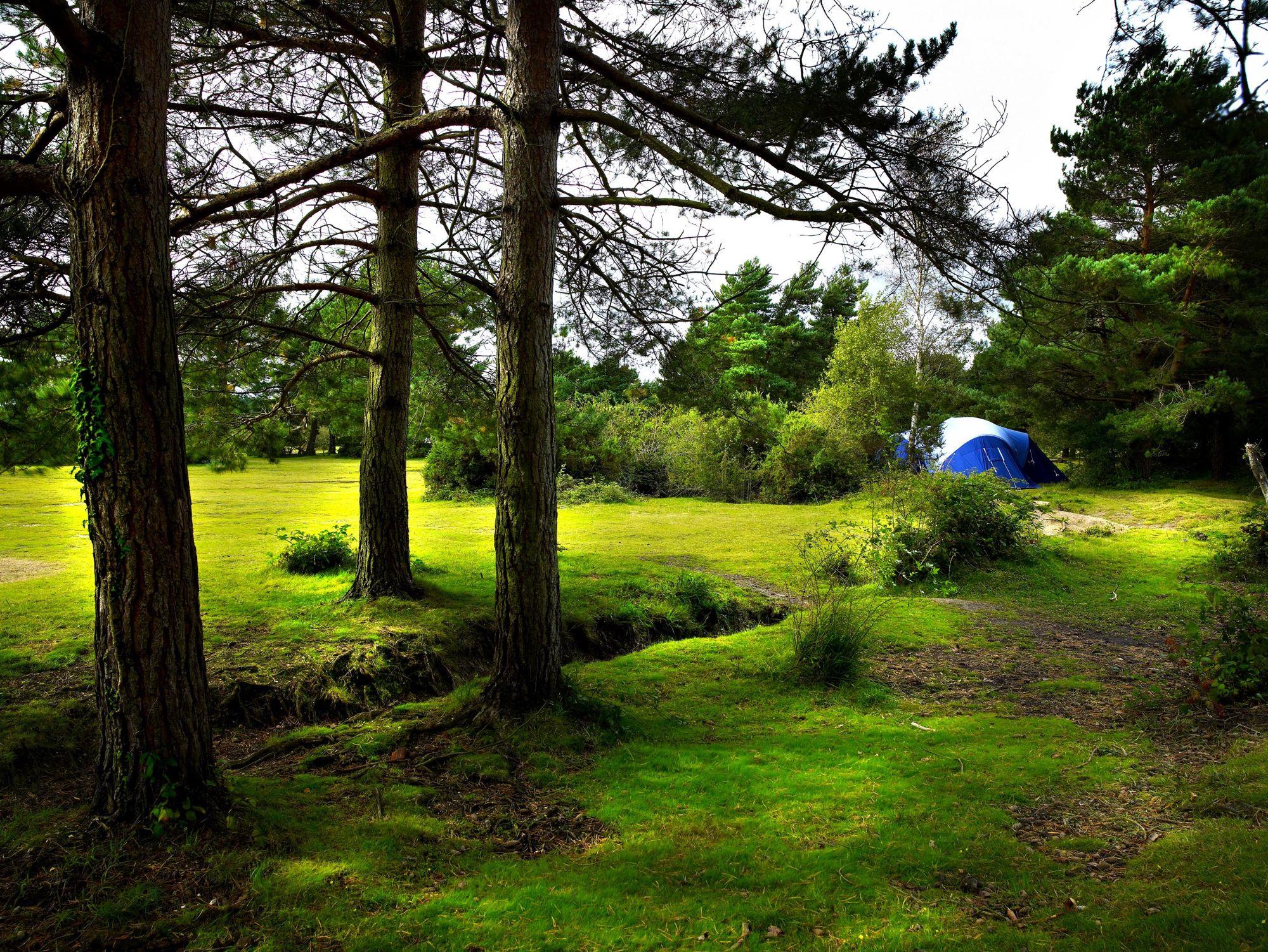 Roundhill Campsite