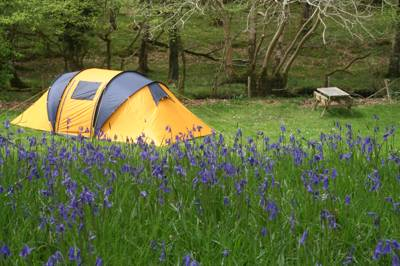 Dinas – Hideaway in the Hillls Dinas Caravan Park, Hideaway in the Hills, Dinas, Llanbedr, Gwynedd LL45 2PH
