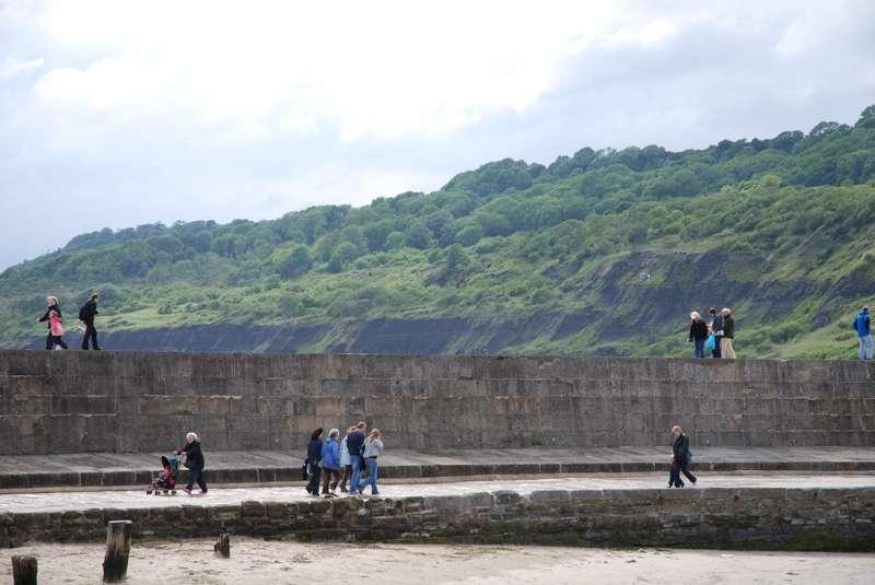 The Undercliff, Lyme Regis