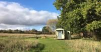 Hilda the Shepherd's Hut