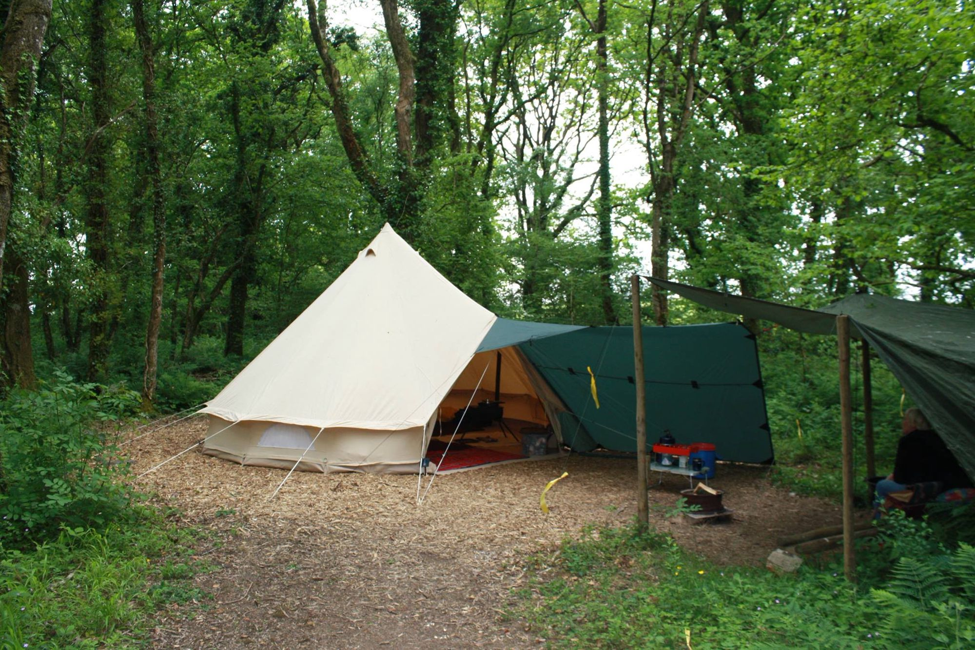 Opening its gates to campers as recently as 2009, Hole Station has already become a firm favourite among the camping fraternity, which is hardly surprising given its secluded woodland pitches, campfire encouragement, and natural beauty.