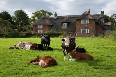 Lunsford Farm Lunsford Farm, Pett Road, Pett, East Sussex TN35 4HH