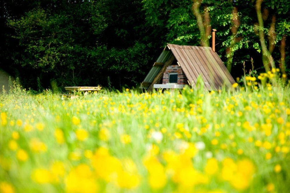 Upper Shadymoor Farm