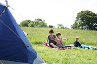 Grass Pitch For Tent