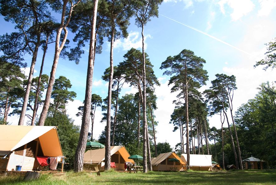 Forest camping for families that's wonderfully wild, natural and eco-friendly despite being just an hour from central Paris.