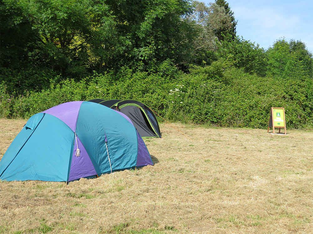 Campsites in the South West