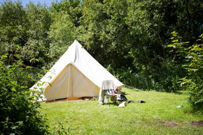 Bluebell Bank - Wild Camping - Private Pitch