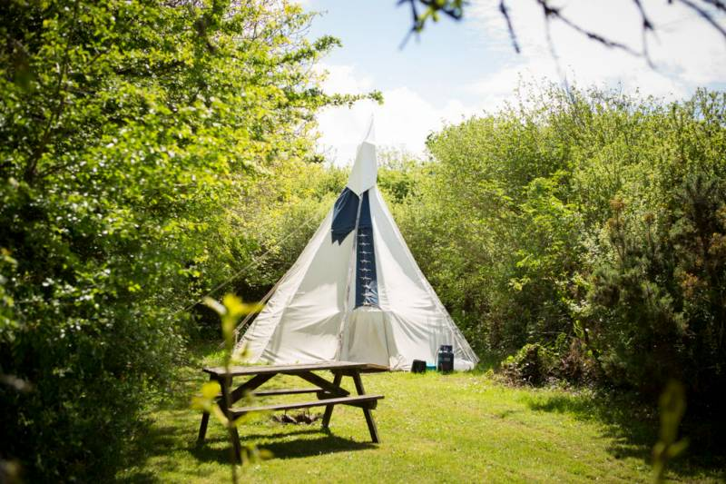 Large Tipi 4 - Village Field
