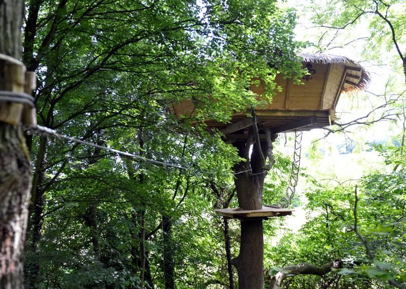 """Soleil Royal"" Tree House"
