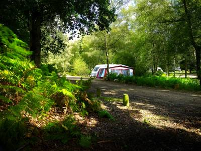 Setthorns Campsite Setthorns, New Milton, Hampshire BH25 5WA