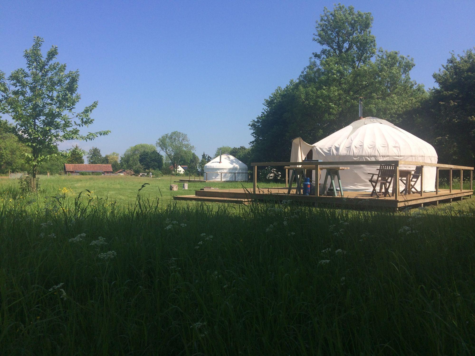 Ivy Grange Farm