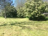 Standard Grass Pitch
