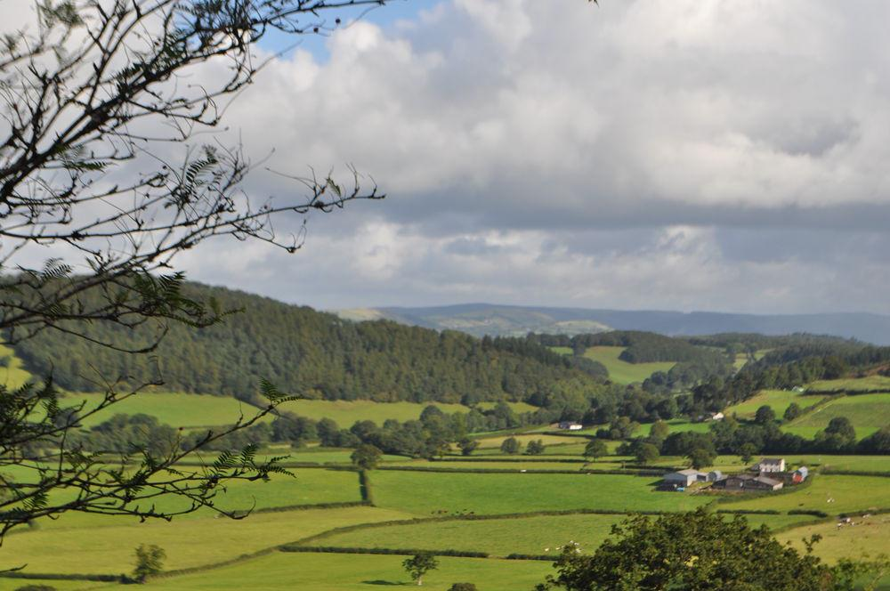 Hotels, B&Bs & Self-Catering in Carmarthenshire - Cool Places to Stay in the UK