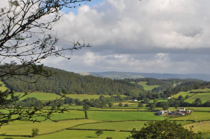 Hotels, B&Bs & Self-Catering in Carmarthenshire