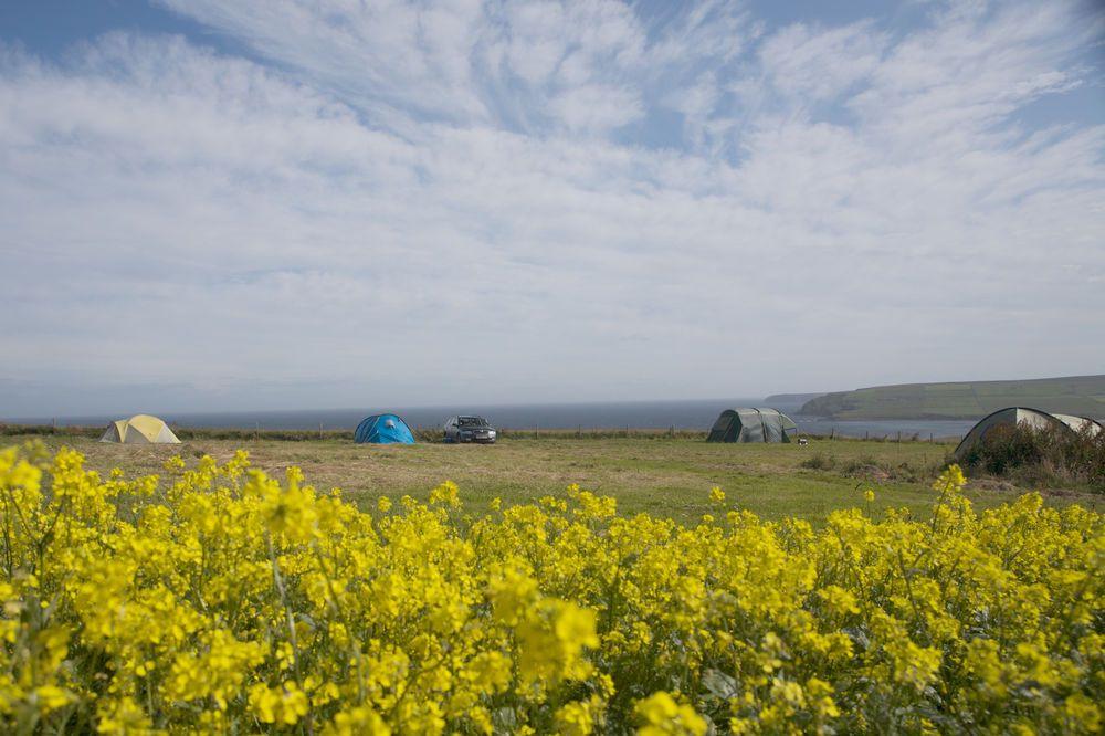 Campsites in Orkney Islands