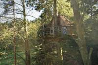 """""""Ecureuil"""" Squirrel Tree House"""
