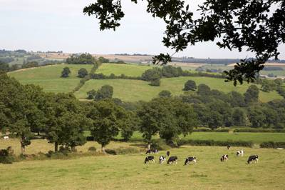 Nature's riches right on your luxury doorstep in the rolling Blackdown Hills.