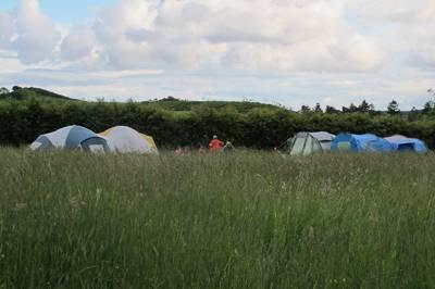 Single Camping Pitch