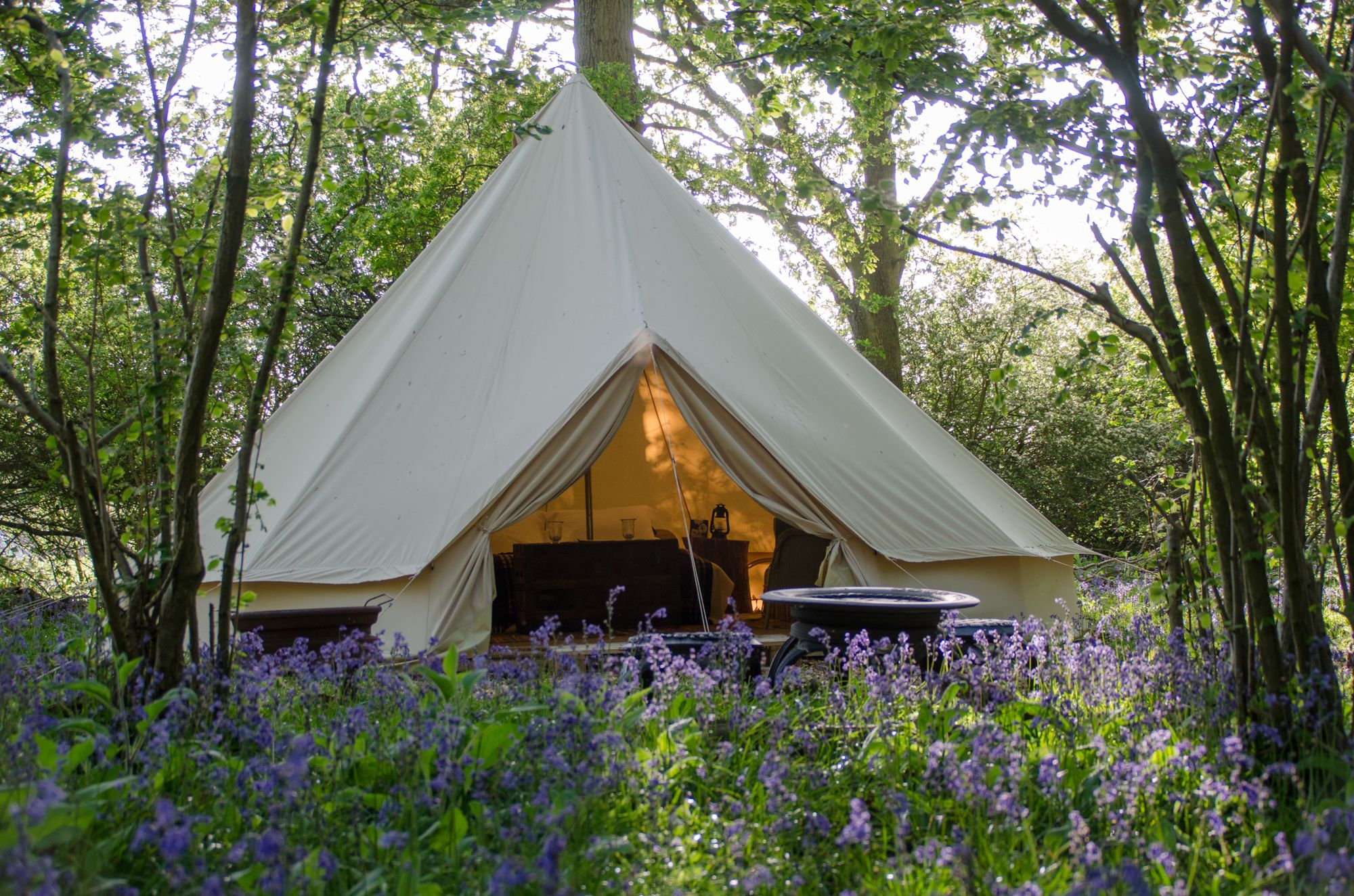 Campsites in West Sussex holidays at Cool Places