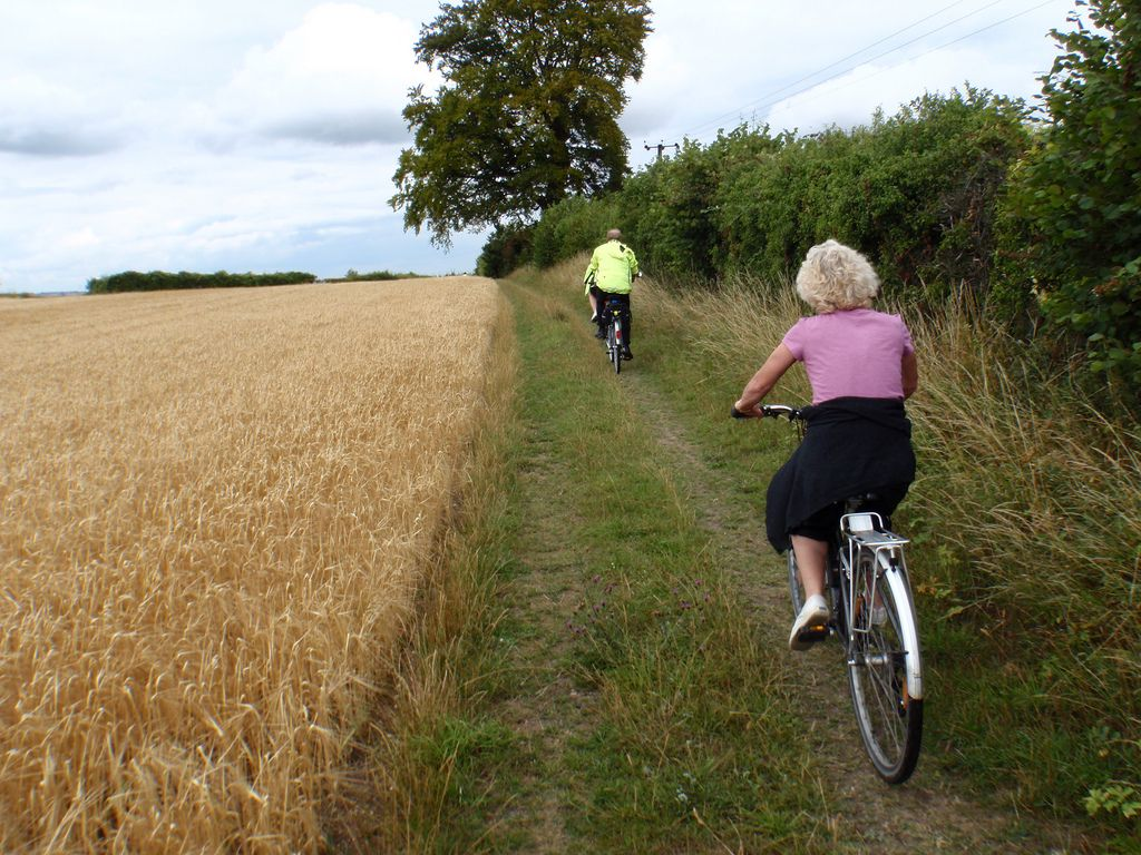 Chilterns Cycleway