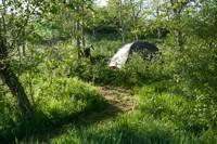 4m x 2.5m Small woodland pitch No. 1