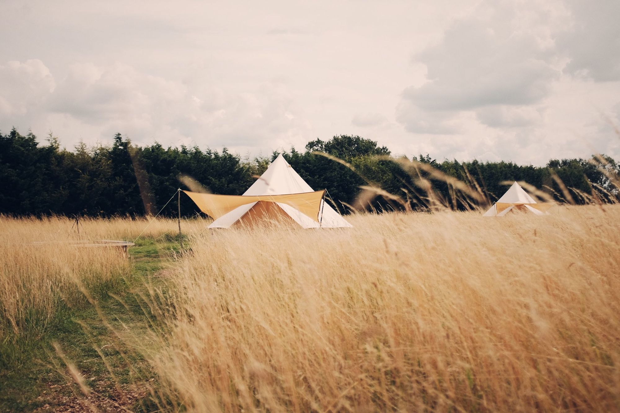 A lush, four acre meadow, abuzz with Suffolk wildlife – the perfect destination for a spot of bell tent bliss.