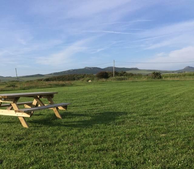 Skylark Meadow Pitch -  Tents Only