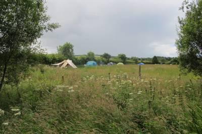 Greenhillock Glamping & Camping Lower Greenhillock, Kirkbuddo, Forfar, Angus DD8 2NL
