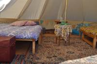Bell tent 5 - HOLLY (field pitch)