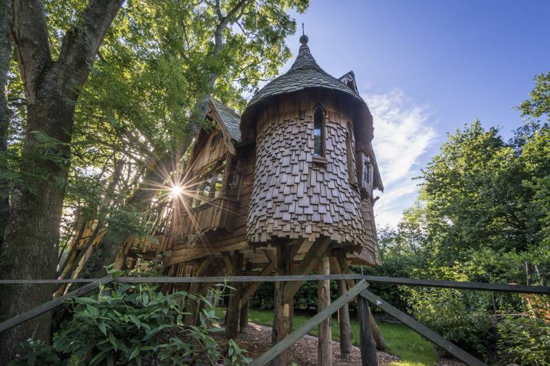 Why are treehouses so popular?