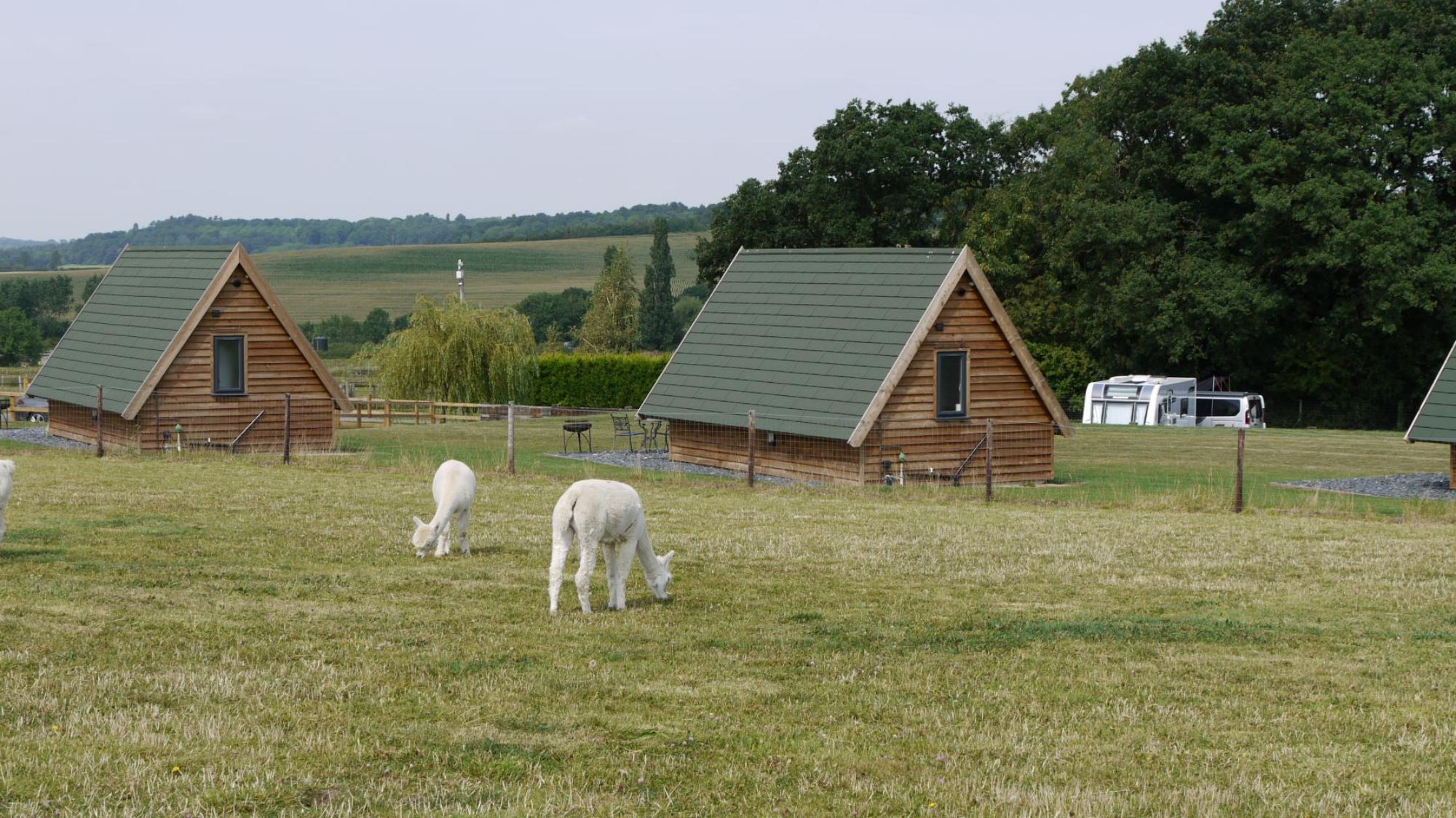 Campsites in Loughborough – I Love This Campsite