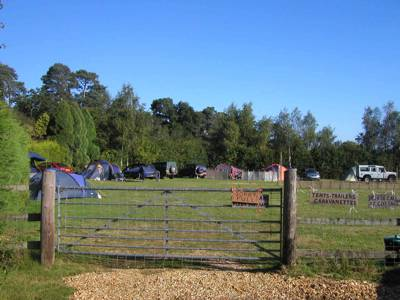 Small-time camping on the edge of the New Forest with a pleasant, family friendly buzz.