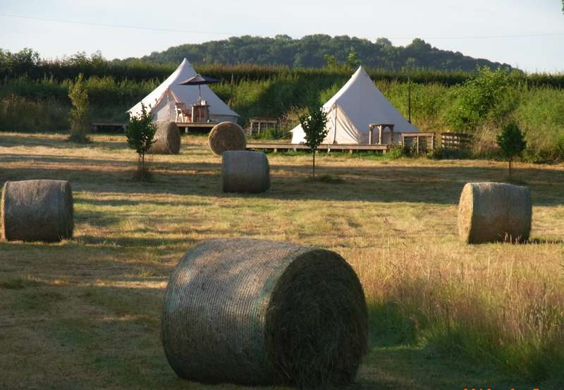 Herefordshire Glamping Alleymoor, Aulden, Ivington, Herefordshire HR6 0JT