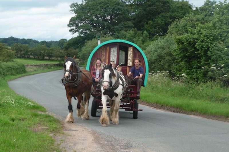 Wanderlusts Gypsy Caravans Wanderlusts Gypsy Caravans, Nutwood, Melmerby, Cumbria, Ca101hf