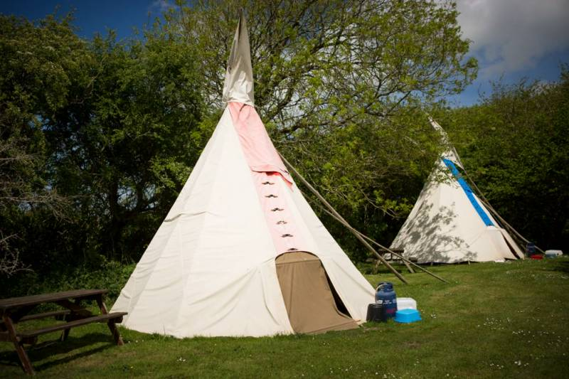 Medium Tipi 7- Village Field