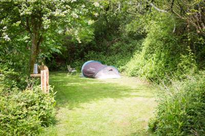 Gosels - Wild Camping - Private Pitch
