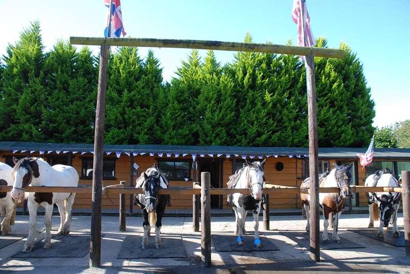 Burley Villa Equestrian Centre