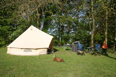 Secluded camping and caravanning situated in the High Weald Area of Outstanding Natural Beauty, deep in the heart of the East Sussex countryside.
