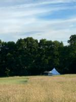 Thistle Bell Tent