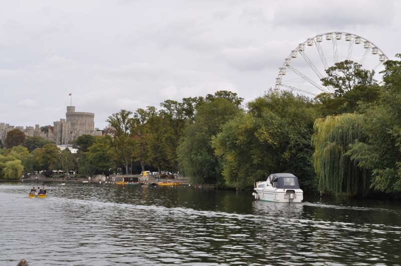 The Windsor Wheel