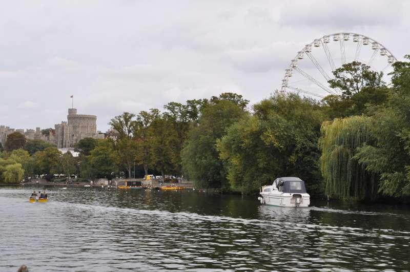 The Windsor Wheel