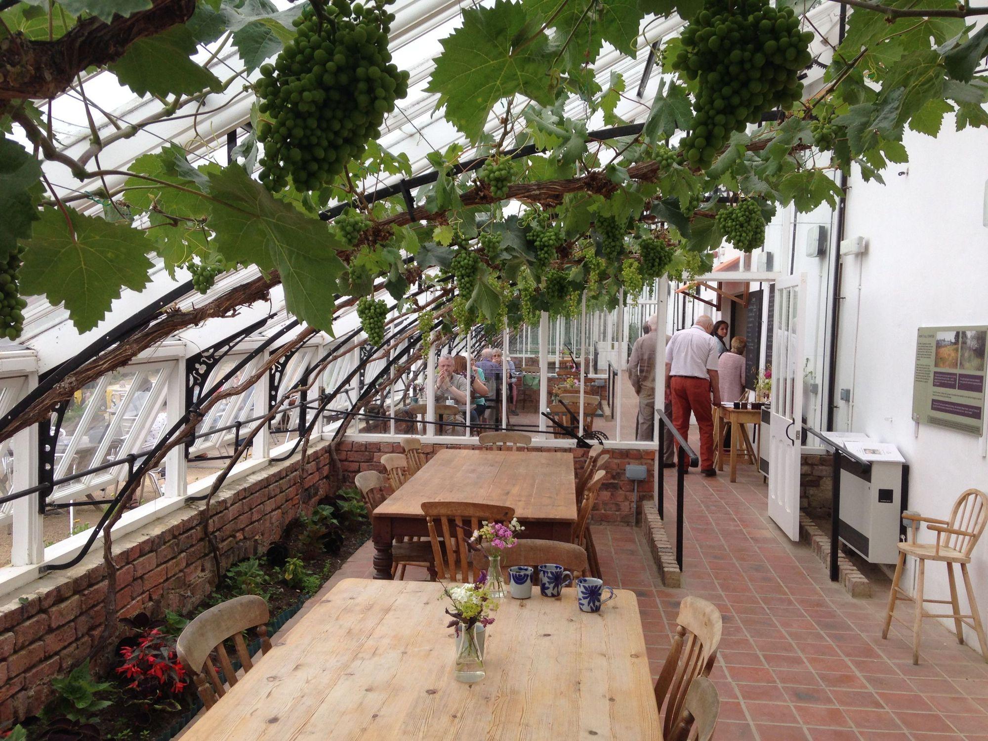 Vinehouse Café