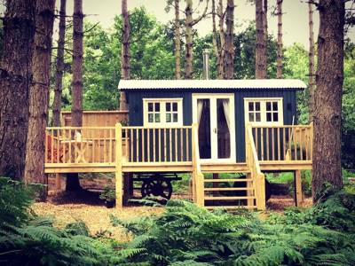 Glamping in Norfolk: Bespoke lodges, shepherd's huts, treehouses and more in the woods of north west Norfolk.