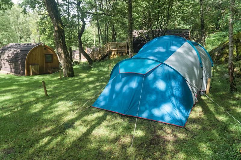 Tent Grass Pitch 5
