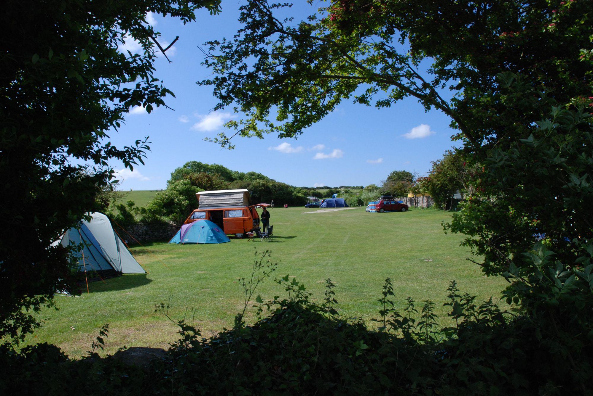 Tom's Field