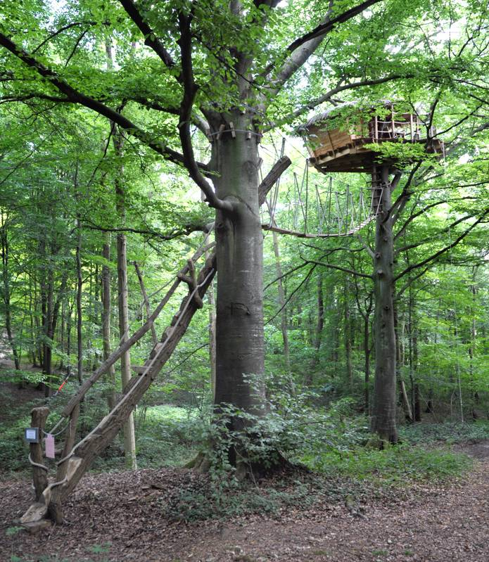 """Berceau"" Tree House"