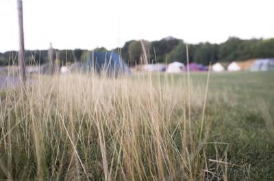 Upper Field tent pitch (car free)