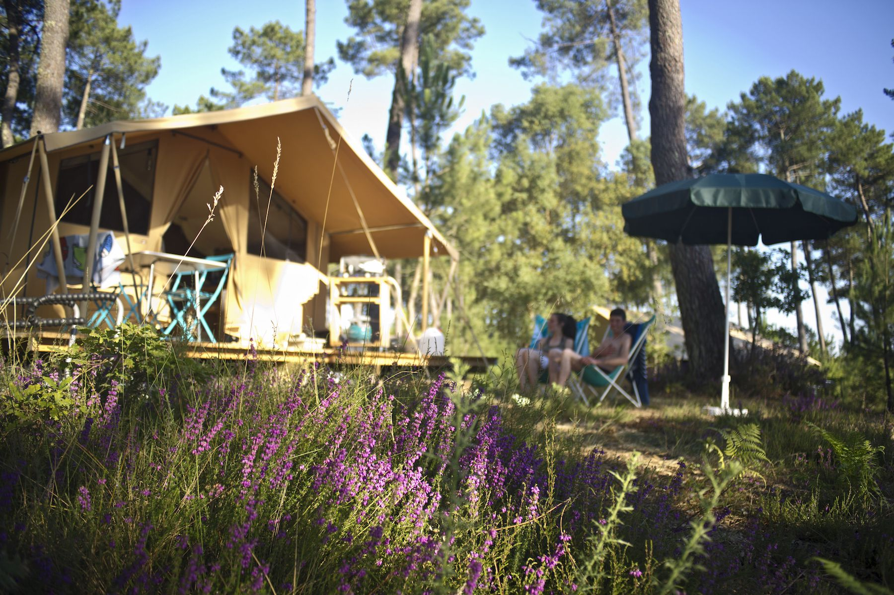 A modern campsite with bucket loads of facilities set in a natural, riverside woodland just a few miles from France's Atlantic coast.